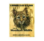 Books on Wood Burning