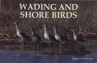 Wading and Shore Birds