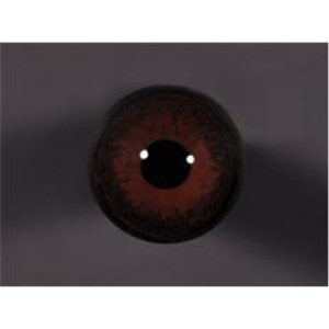 Tohickon Off-wire Teal blended 13mm