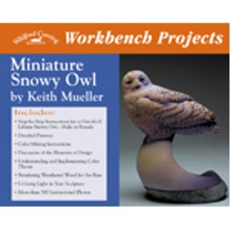 Workbench Projects: Miniature Snowy Owl