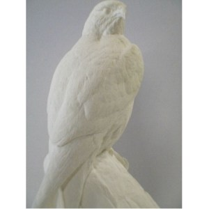 Falcon, Perigine (1/3 scale), bob Guge study cast, out of stock with no date  for restocking