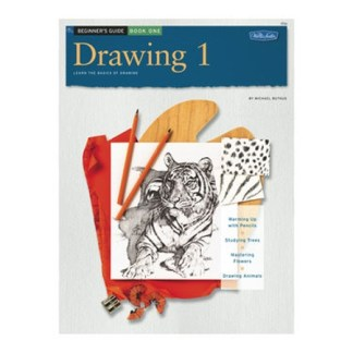 Beginner's Guide: Drawing 1