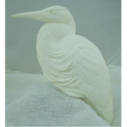 Heron, Gr. Blue , bob Guge study cast