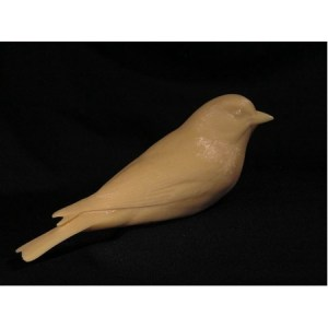 Tanager, Western Female, Jerry Simchuk study cast