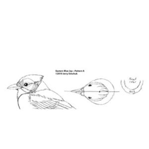 Blue Jay, Jerry Simchuk Pattern