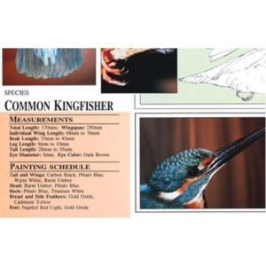 Harou Uchiyama Songbird Patterns  Common Kingfisher