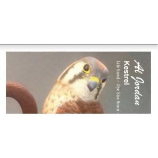Kestrel Color Card Al Jordan