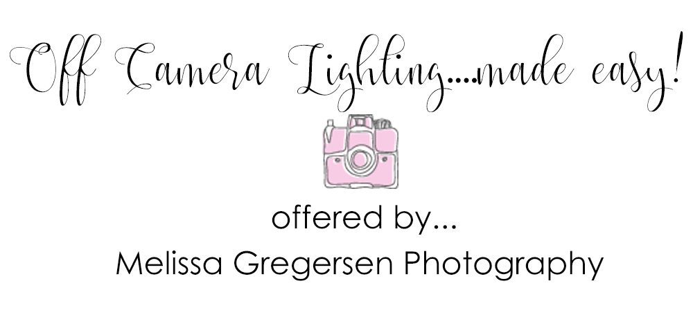 Off Camera Flash Photography Workshop {Kalamazoo Michigan Photography Tutoring and Workshop Class}