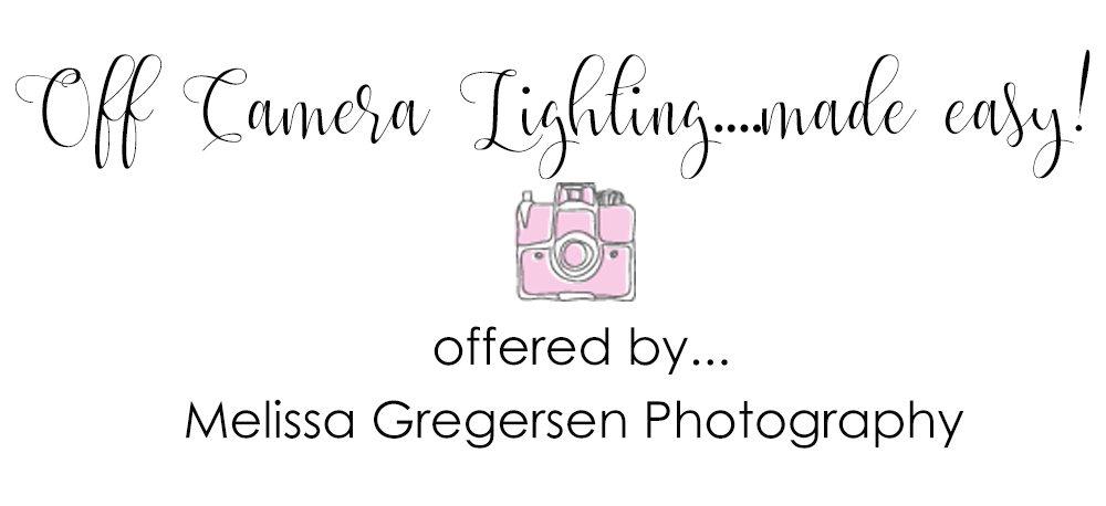 Off Camera Flash Photography Workshop {Kalamazoo Michigan Photography Tutoring and Workshop Class}