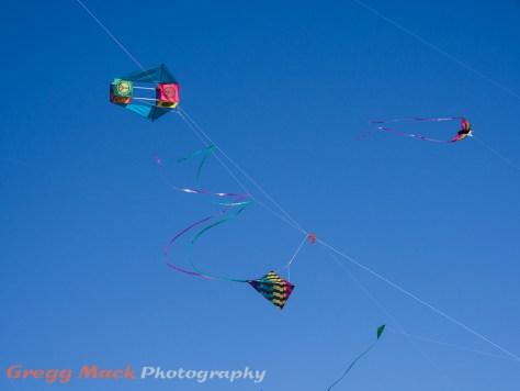 20130303_Zilker_Kite_Festival_029