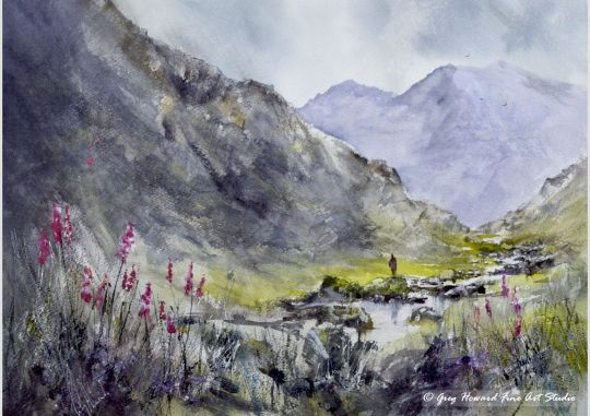 Foxgloves In Langstrath Valley IV
