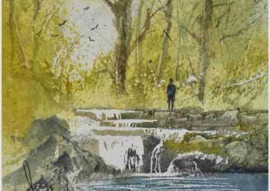 Woodland Stream I