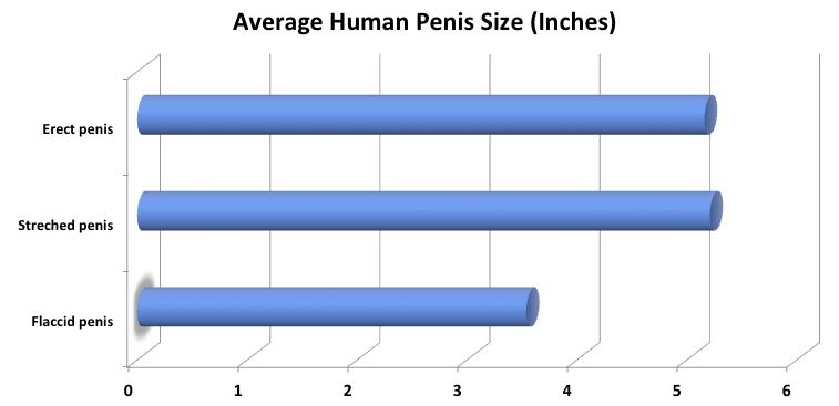 Igiena penisului