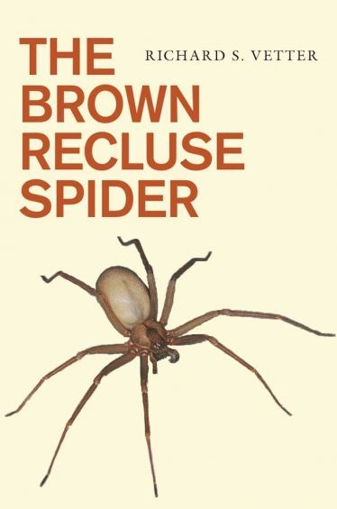 The Truth About The Brown Recluse Spider