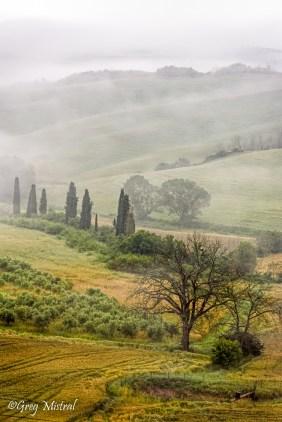 Les champs toscans prêt de San Quirico d'Orcia.