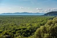Le parc naturel de la Maremma de la Torre di Collelungo
