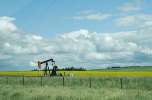 Little Oil Well