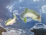 fish-mural-Klamath-California