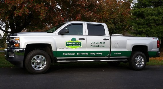Pickup truck with graphics