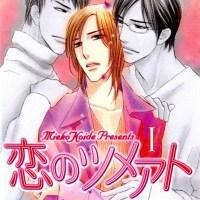 Koide Mieko: Koi no Tsumeato V01-V03
