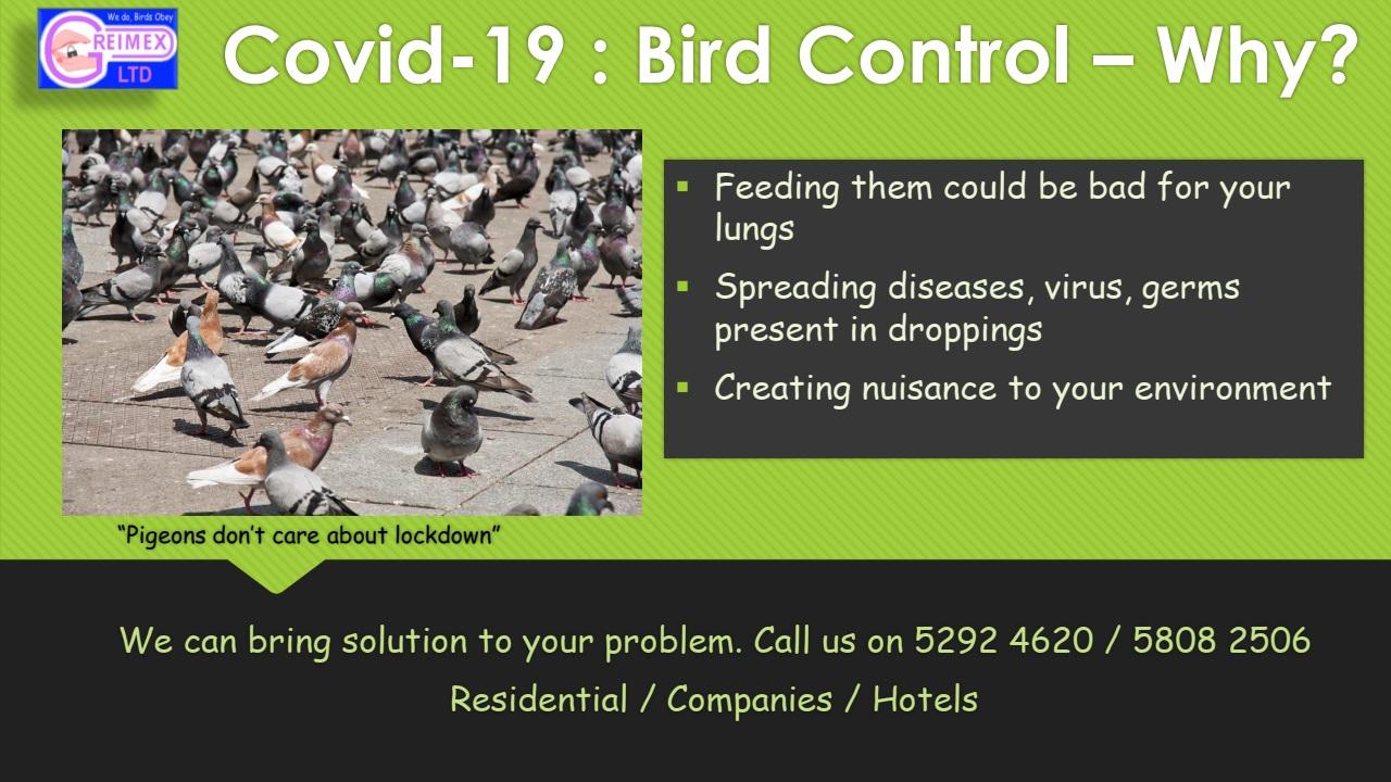 COVID-19 : BIRD Control- WHY
