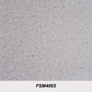 FSM4003