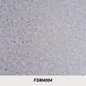 FSM4004