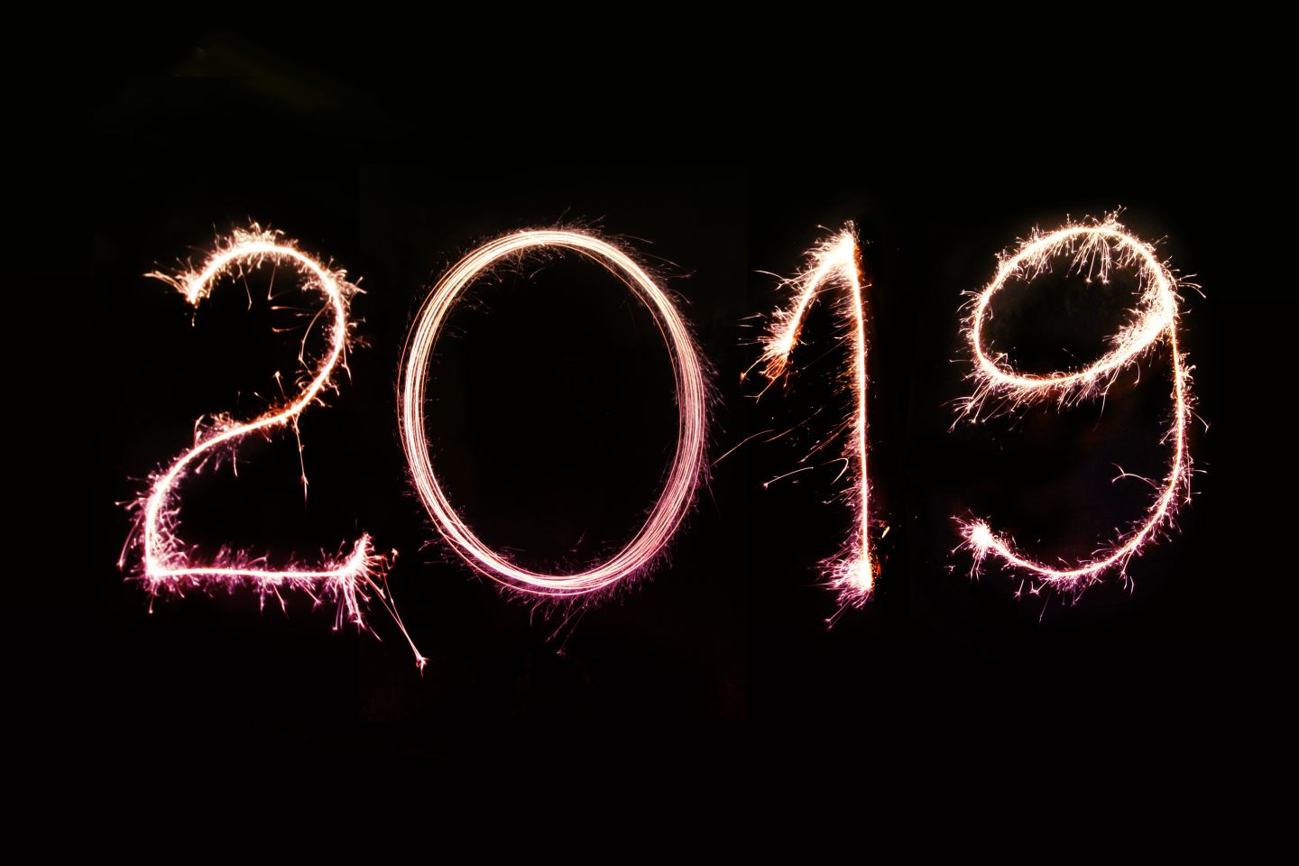 2019… a year in review!