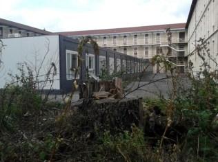 massacre à la tronçonneuse au lycée Champollion