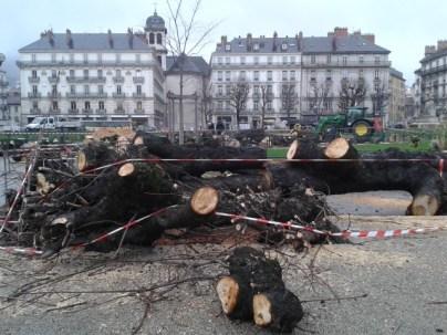 19 marronniers place Victor Hugo