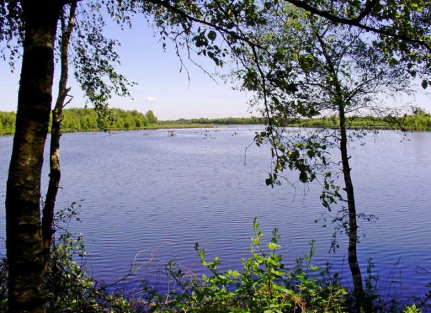 Het Zwillbrocker Venn, vol water, foto van Wikipedia