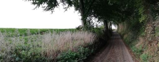 In het Zuid-Limburgse heuvelland