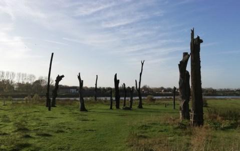De Bomencirkel van Meers, aan de oever van de Maas