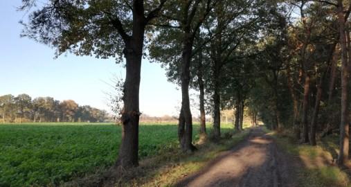 Door pittoresk landschap westelijk van Budel