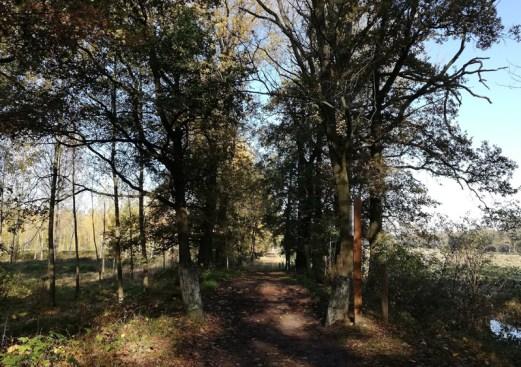 In natuurpark De Plateaux / Hageven