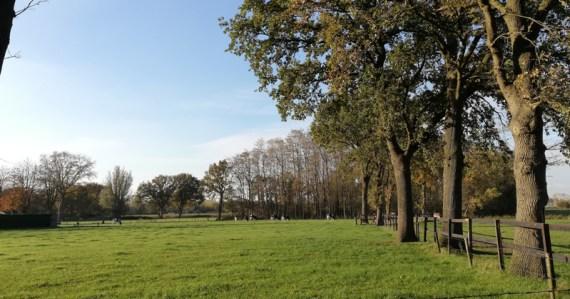 Het landschap bij Oekel