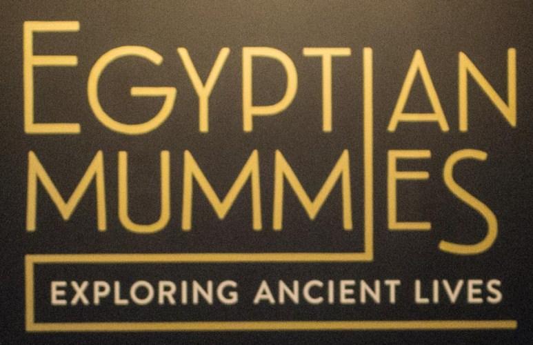 Egyptian Mummies at Sydney's Powerhouse Museum #PowerhouseMuseum #EgyptianMummies