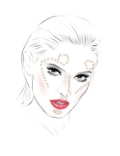 face chart