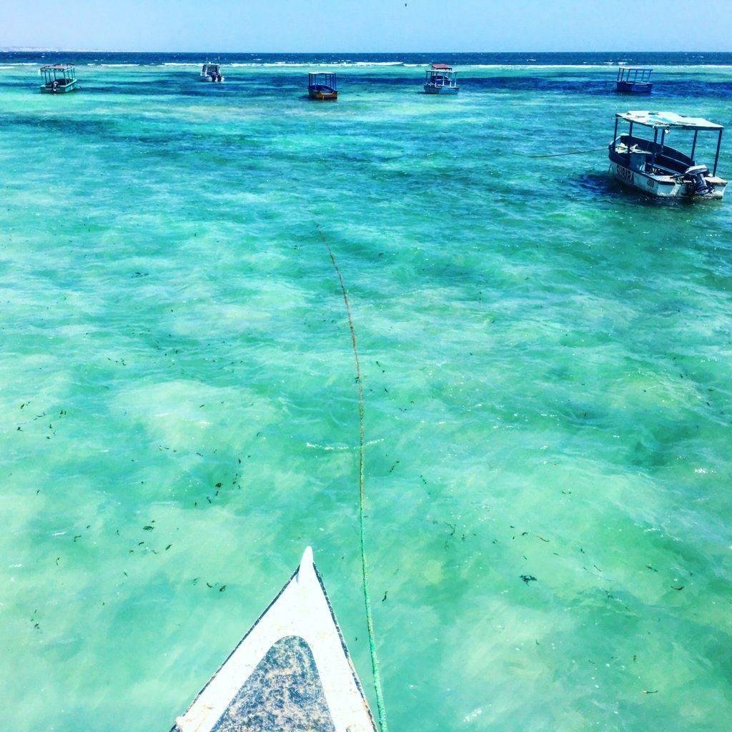 Going on a boat trip in the turquoise waters of the Malindi Marine National Park