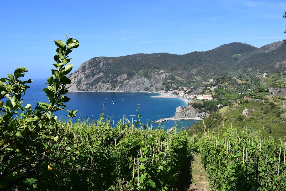 Somewhere along the Sentiero Azzurro, watching Monterosso in the distance