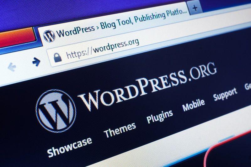 need SEO to rank your WordPress site