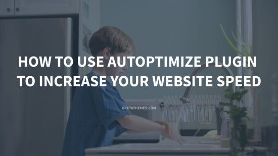 How to Use Autoptimize Plugin to Increase Your Website Speed