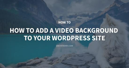 Add a Video Background to Your WordPress Site