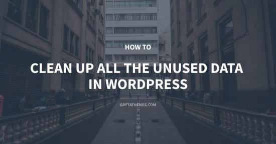 How to Clean Up All the Unused Data in WordPress