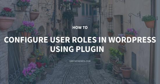 Configure User Roles in WordPress Using Plugin