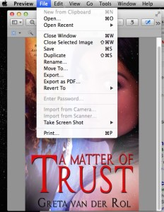 A picture of the Preview file menu