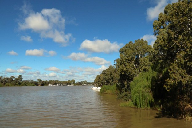 The Murray River. It probably needs to undo that top button