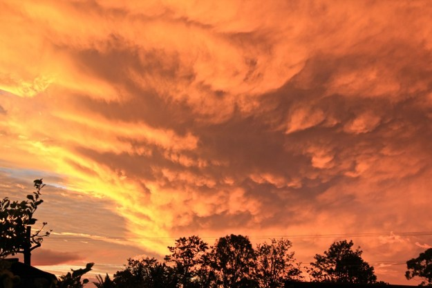 Mammary cloud under a huge summer storm at sunset - fortunately tracking away from us