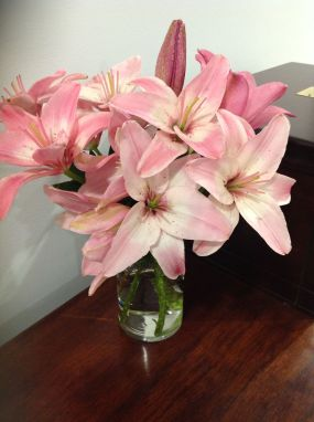 pink lilies 2014