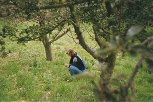 Gretchen_apple_orchard_France_1993